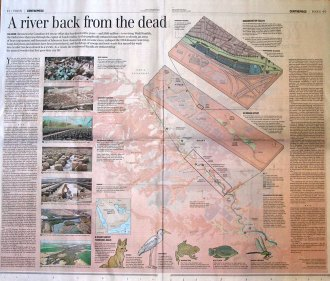 River back from dead