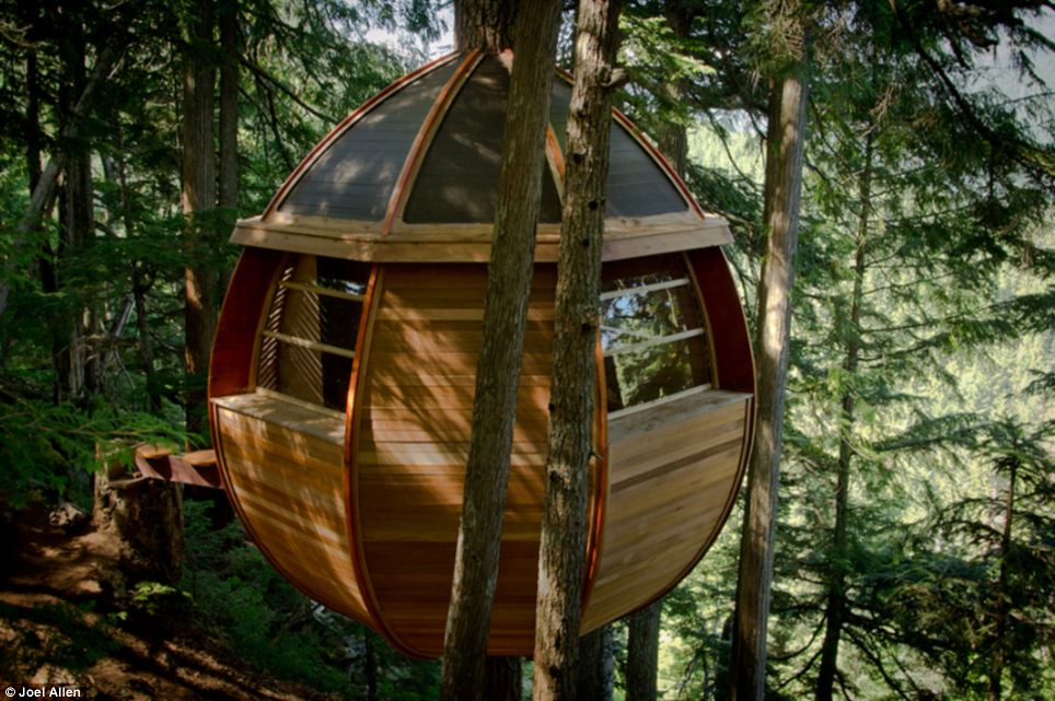 A Treehouse Gone Viral Price Tags