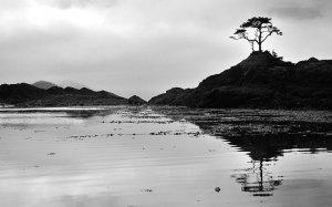 Rick-Hulbert-Landscapes-11