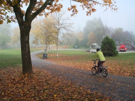 Park.Bike.Lane.01