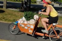 Cargo.Bike.47