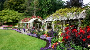 stanley-park-rose-garden
