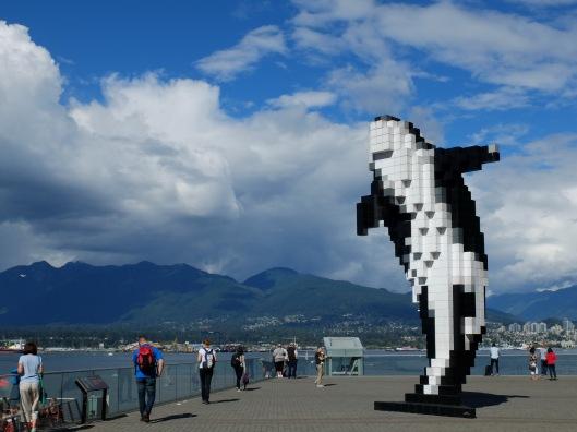 digital-orca