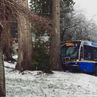 sorry-snow-bus