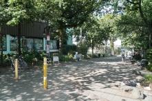 01.Napier.Square.Greenway