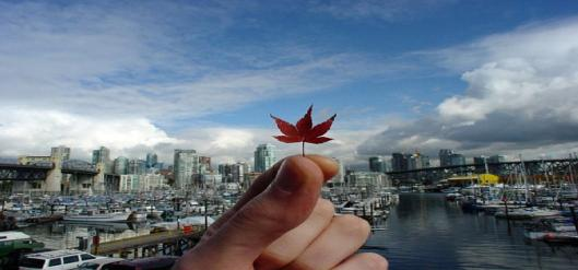 fall_in_vancouver