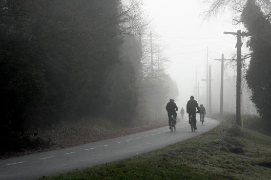 Foggy.Sunday.Greenway